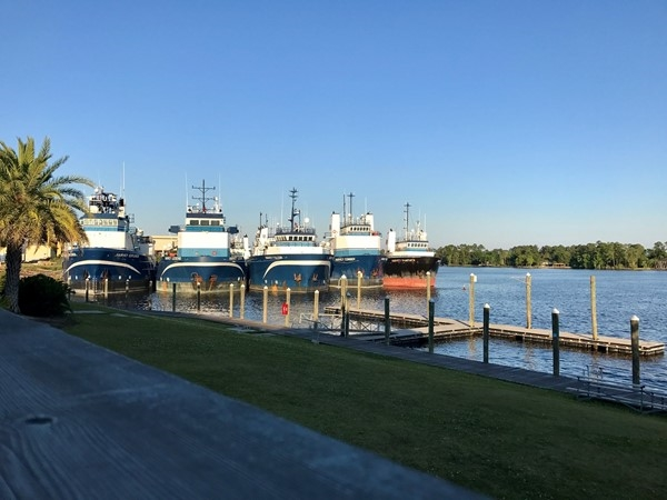 Boats docked at Gulfport Lake