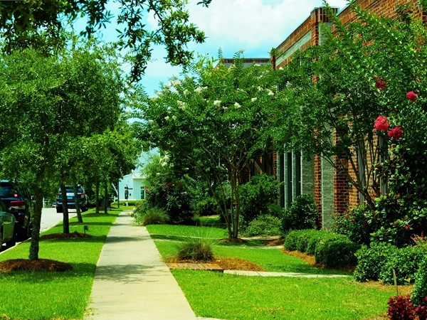 Come take a stroll down the tree-lined streets in Bellegrass