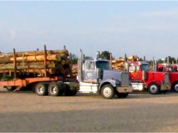 Timber industry in Southwest Mississippi