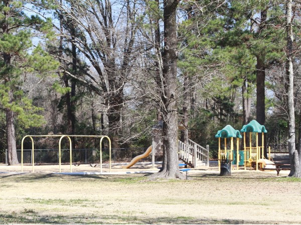 """Edgewood Park"".  A family friendly park in McComb, MS to take your children to"